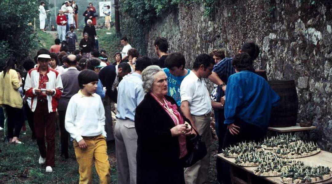 IX Romaxe – 1986