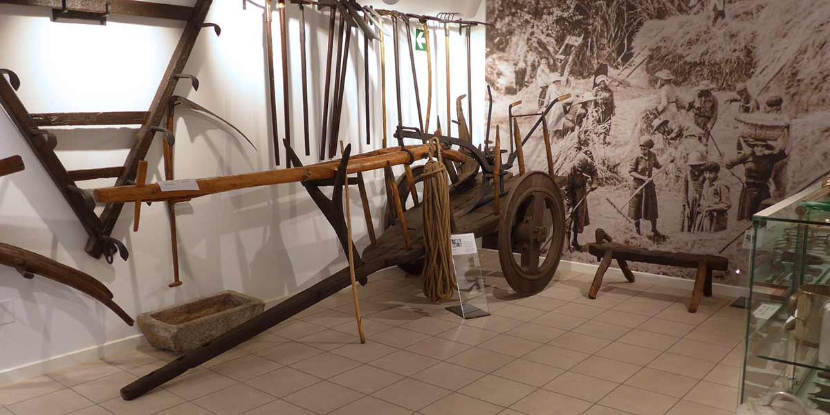 Museo das Pontes, o campo